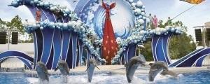 シーワールド・サンディエゴ(SeaWorld San Diego)