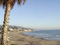 ロサンゼルスのお花見スポット