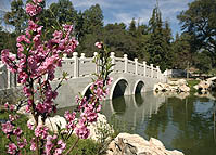 The Huntington Library, Art Collection, and Botanical Gardens